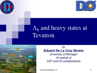 Λ b  and heavy states at Tevatron