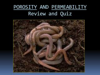 POROSITY  AND  PERMEABILITY Review and Quiz