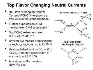 Top Flavor Changing Neutral Currents