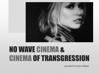 NO WAVE  CINEMA  & CINEMA  OF TRANSGRESSION