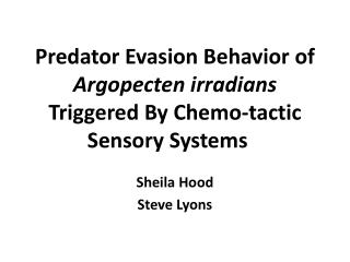 Predator Evasion Behavior of  Argopecten irradians  Triggered By Chemo-tactic  Sensory Systems