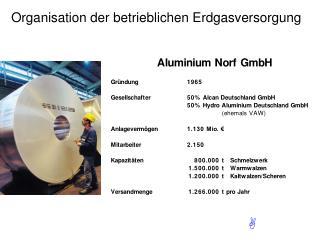 Organisation der betrieblichen Erdgasversorgung