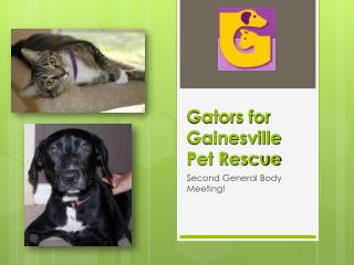 Gators for Gainesville  Pet Rescue