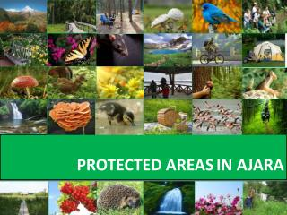 PROTECTED AREAS IN AJARA