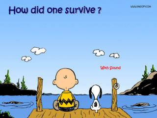 How did one survive ?