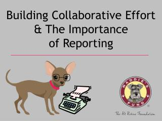 Building Collaborative Effort & The Importance of Reporting