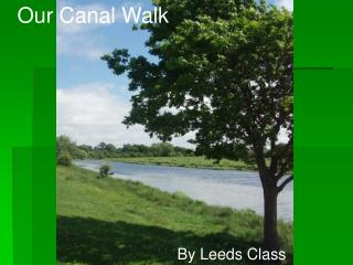 Our Canal Walk
