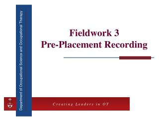 Fieldwork 3  Pre-Placement Recording