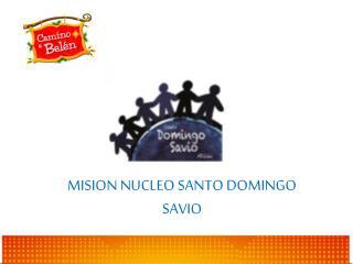 MISIÓN NÚCLEO SANTO DOMINGO SAVIO