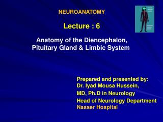 NEUROANATOMY Lecture : 6 Anatomy of the Diencephalon, Limbic System Pituitary Gland &