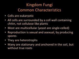 Kingdom Fungi Common Characteristics