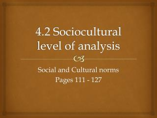 4.2 Sociocultural level of analysis