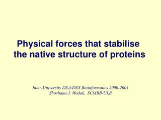 Physical forces that stabilise  the native structure of proteins