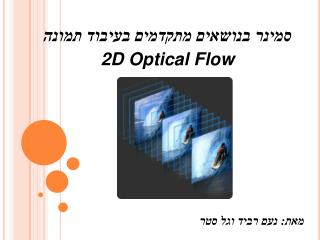 2D Optical Flow         :