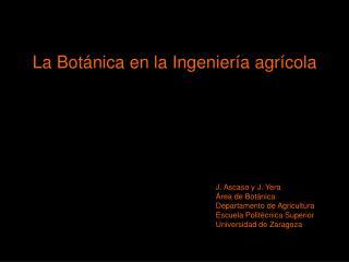 La Botánica en la Ingeniería agrícola