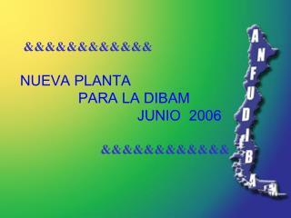 &&&&&&&&&&&& NUEVA PLANTA  PARA LA DIBAM                              JUNIO  2006 &&&&&&&&&&&&