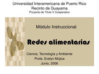 Universidad Interamericana de Puerto Rico Recinto de Guayama Proyecto de Título V Cooperativo