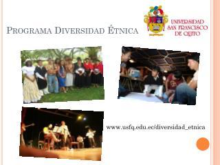 Programa Diversidad Étnica