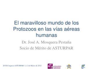 El maravilloso mundo de  los Protozoos  en las vías aéreas  humanas