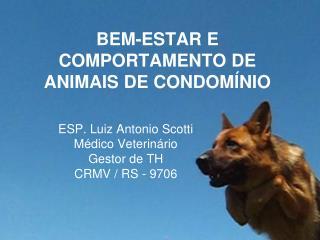 BEM-ESTAR E COMPORTAMENTO DE ANIMAIS DE CONDOM NIO