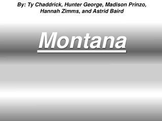 By:  Ty  Chaddrick ,  Hunter George, Madison  Prinzo , Hannah  Zimms , and Astrid Baird Montana