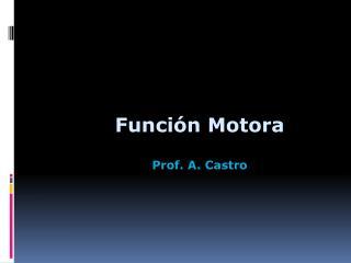 Función Motora Prof. A. Castro