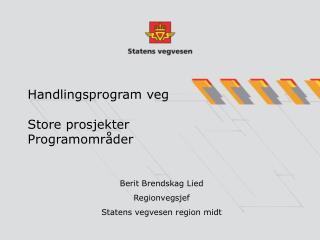 Handlingsprogram veg Store prosjekter Programområder
