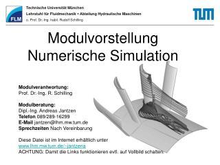 Modulvorstellung Numerische Simulation