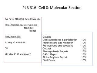 PLB 316: Cell & Molecular Section
