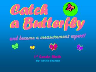 Catch  a Butterfly