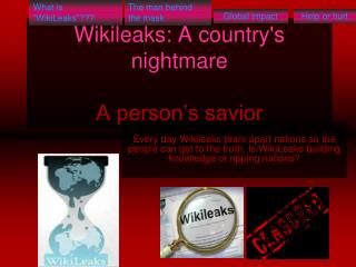 Wikileaks: A country's nightmare A person's savior