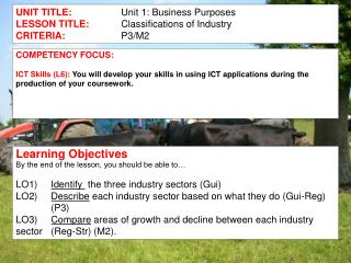 UNIT TITLE: Unit 1: Business Purposes LESSON TITLE: 	Classifications of Industry