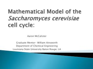 Mathematical Model of the  Saccharomyces cerevisiae  cell cycle: