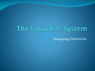 The Linux File System