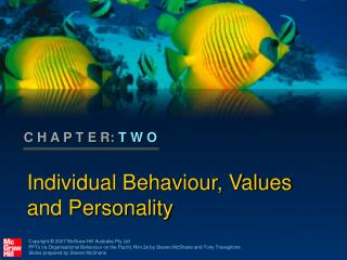 Individual Behaviour, Values and Personality