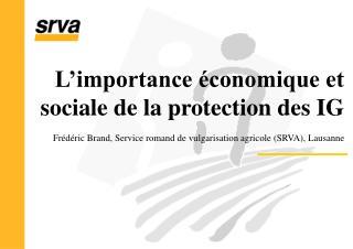 L'importance économique et sociale de la protection des IG