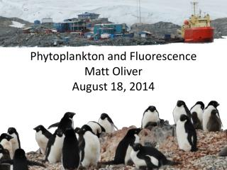 Phytoplankton and Fluorescence Matt Oliver August 18, 2014