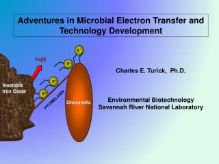 Adventures in Microbial Electron Transfer and Technology Development