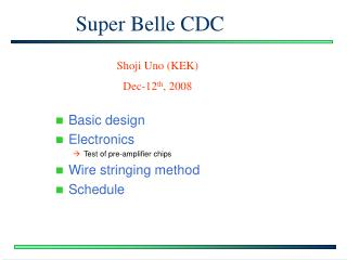 Super Belle CDC