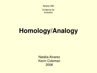 Homology/Analogy