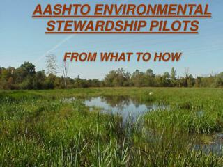 AASHTO ENVIRONMENTAL STEWARDSHIP PILOTS  FROM WHAT TO HOW