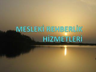 MESLEKİ REHBERLİK HİZMETLERİ