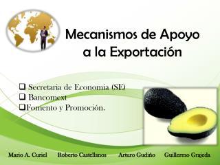 Mecanismos de Apoyo a la Exportación