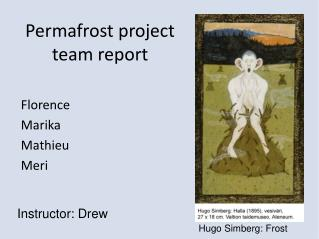 Permafrost project team report