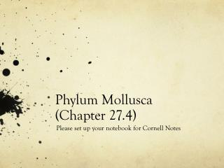 Phylum Mollusca  (Chapter 27.4)