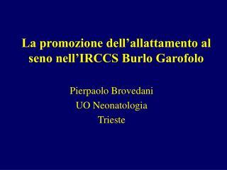 La promozione dell allattamento al seno nell IRCCS Burlo Garofolo