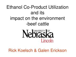 Ethanol Co-Product Utilization  and its  impact on the environment -beef cattle