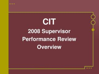 CIT 2008 Supervisor Performance Review Overview