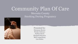 Community Plan Of Care Mecosta County Smoking During Pregnancy
