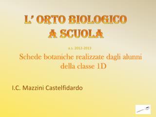 Schede botaniche realizzate dagli alunni della classe 1D I.C. Mazzini  Castelfidardo